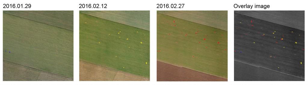 time series UAV 201606 [176227]_Anwendung Landwirtschaft_1