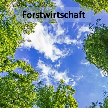 Forstwirtschaft_groß_schwarz